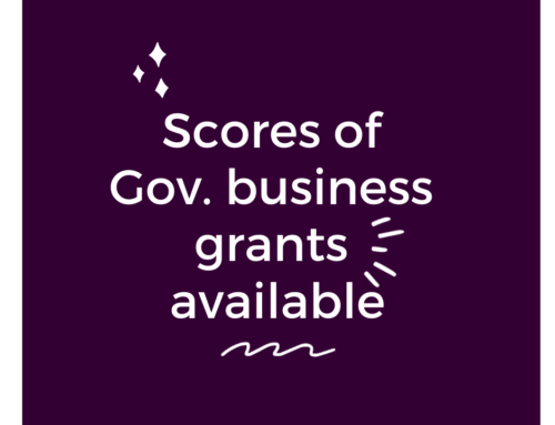 Scores of Gov business grants available